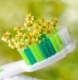 Капли для зубов на основе трав