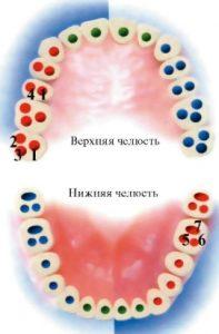 Определить количество каналов в зубе можно с помощью рентгеновского снимка